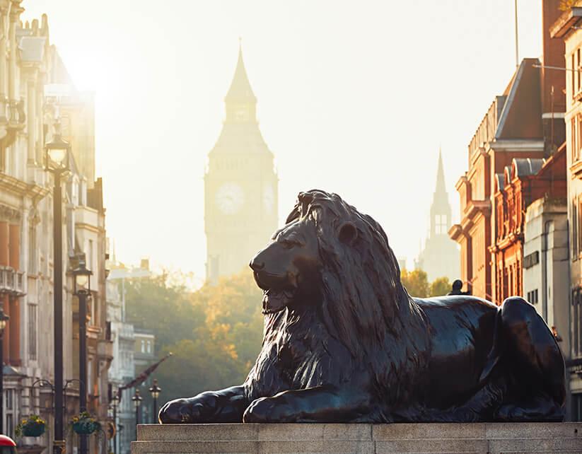 LIONS - LIONS - desde 2190.00 €